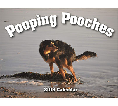 Pooping Pooches Gag Gift 2019 Calendar